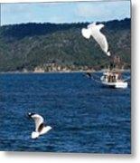 Australia - Seagulls And Trawlers Metal Print