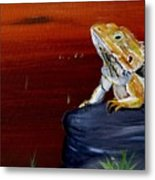 Australian Central Bearded Dragon Metal Print