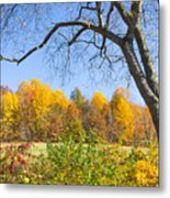 Autumn # 1 Metal Print