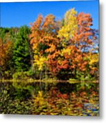 Autumn - Fall Color Metal Print
