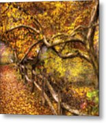 Autumn - Landscape - Country Road Side Metal Print