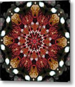 10446 Autumn 01 Kaleidoscope Metal Print