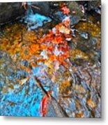 Autumn 2015 164 Metal Print