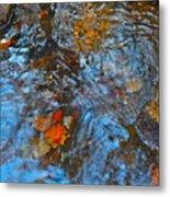 Autumn 2015 187 Metal Print
