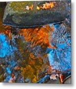 Autumn 2015 249 Metal Print