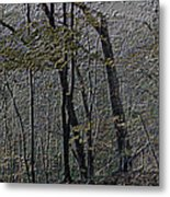 Autumn 2015 Panorama In The Woods Pa 01 Metal Print