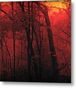 Autumn 2015 Panorama In The Woods Pa 06 Metal Print