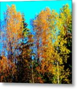 It's Getting Colder Every Day And Soon It Will Be Winter Again    Metal Print by Hilde Widerberg