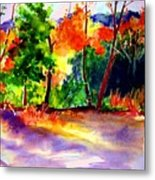 Autumn Afternoon Metal Print