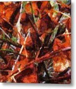 Autumn Allegretto Metal Print