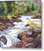 Autumn Along The Vermillion River Metal Print
