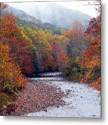 Autumn Along Williams River Metal Print by Thomas R Fletcher