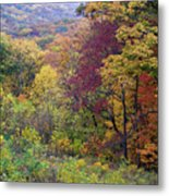 Autumn Arrives In Brown County - D010020 Metal Print