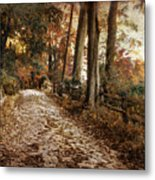 Autumn Ascending  Metal Print