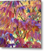 Autumn Ash Tree 3 Metal Print