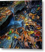 Autumn At A Mountain Stream Metal Print