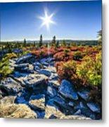 Autumn At Bear Rocks Metal Print