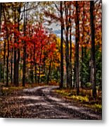 Autumn At Hickory Run Metal Print