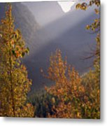 Autumn At Logan Pass Metal Print