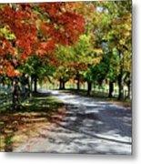 Autumn At Oatlands Lane Metal Print