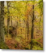 Autumn At Rim Rock Metal Print