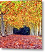 Autumn At Shinjuku Park Metal Print