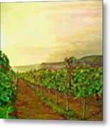 Autumn At Steenberg Metal Print