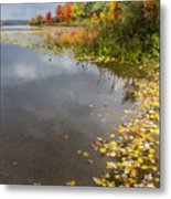 Autumn At The Lake In Nh Metal Print
