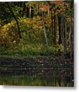 Autumn At Wrights Pond Metal Print