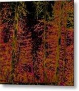 Autumn Aura Metal Print