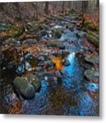 Autumn B 2015 111 Metal Print