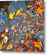 Autumn B 2015 116 Metal Print