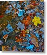 Autumn B 2015 123 Metal Print