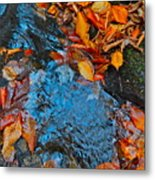 Autumn B 2015 185 Metal Print