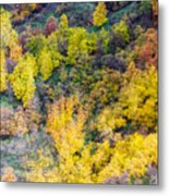 Autumn Background  Metal Print