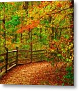Autumn Bend - Allaire State Park Metal Print