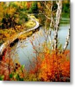 Autumn Birch Lake Boardwalk Metal Print