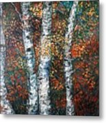 Autumn Birch Metal Print