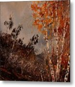 Autumn Birches  Metal Print