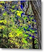 Autumn Blue  Metal Print