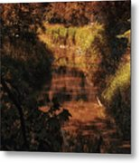 Autumn By The Argyle Creek Metal Print