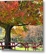 Autumn By The River On 105 Metal Print