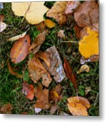 Autumn Carpet 001 Metal Print