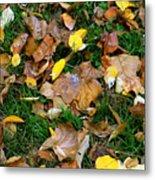 Autumn Carpet 002 Metal Print