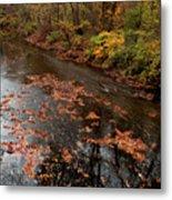 Autumn Carpet 003 Metal Print