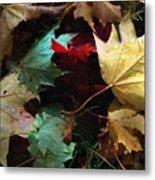 Autumn Carpet Metal Print