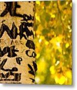 Autumn Carvings Metal Print