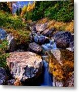 Autumn Cascade Metal Print