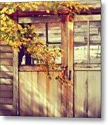 Autumn Color Metal Print