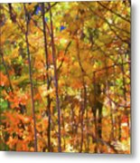 Autumn Colored Metal Print